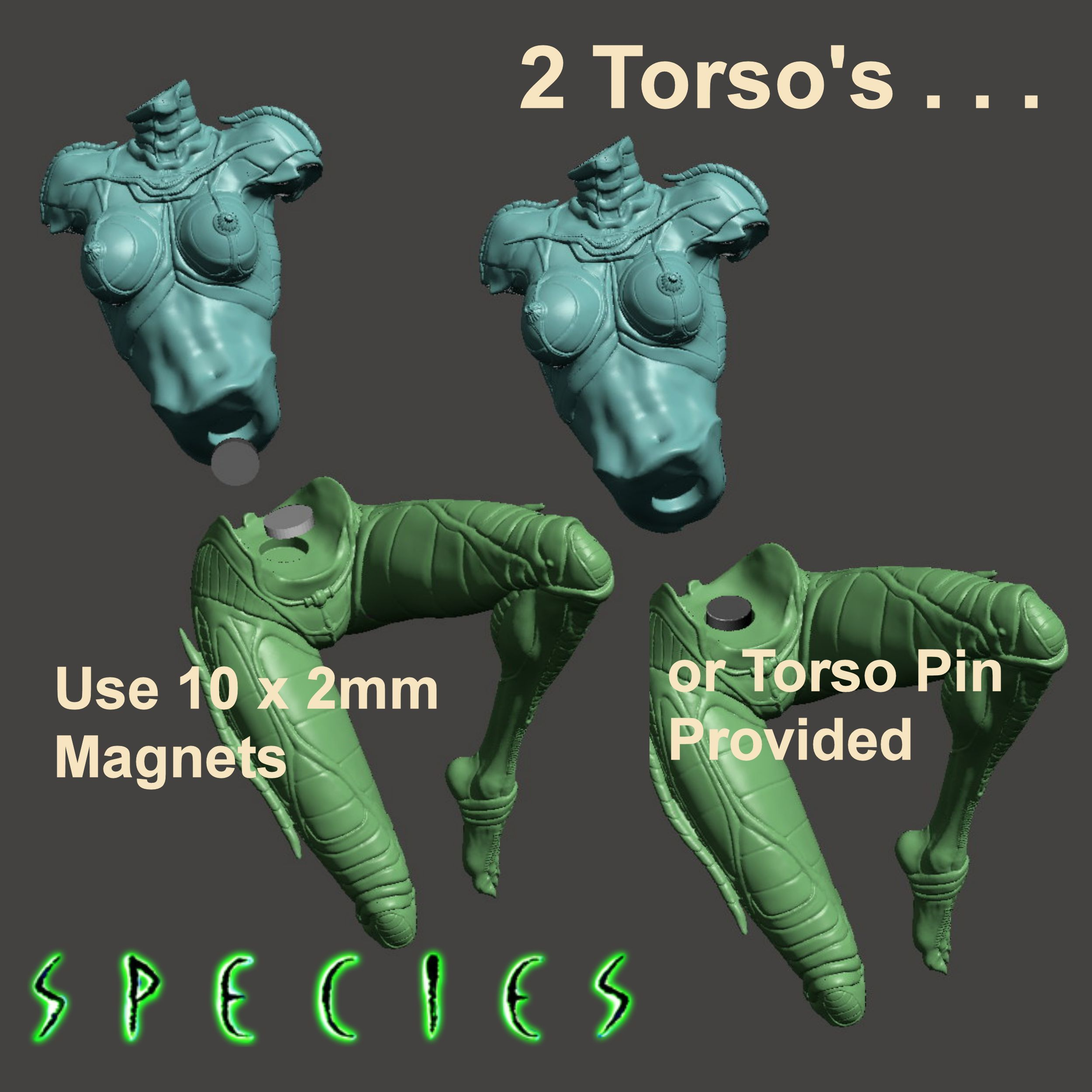 Image4.jpg Download STL file Alien Girl - SPECIES Part 1- by SPARX • 3D printable object, wikd2011