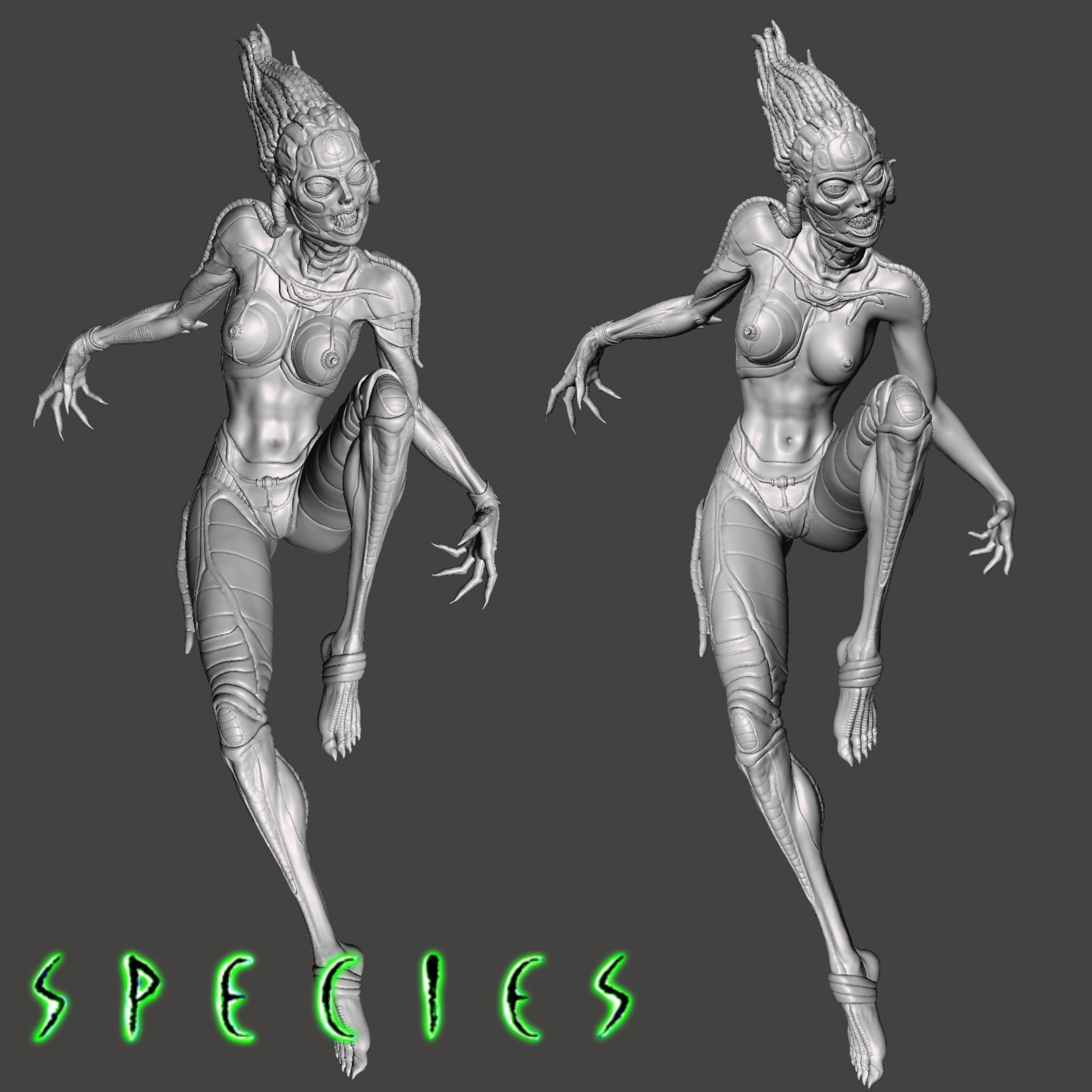 Image12.jpg Download STL file Alien Girl - SPECIES Part 1- by SPARX • 3D printable object, wikd2011