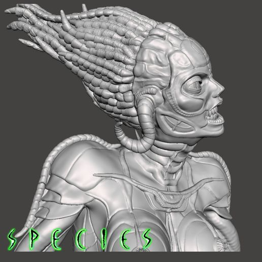 Image16.jpg Download STL file Alien Girl - SPECIES Part 1- by SPARX • 3D printable object, wikd2011