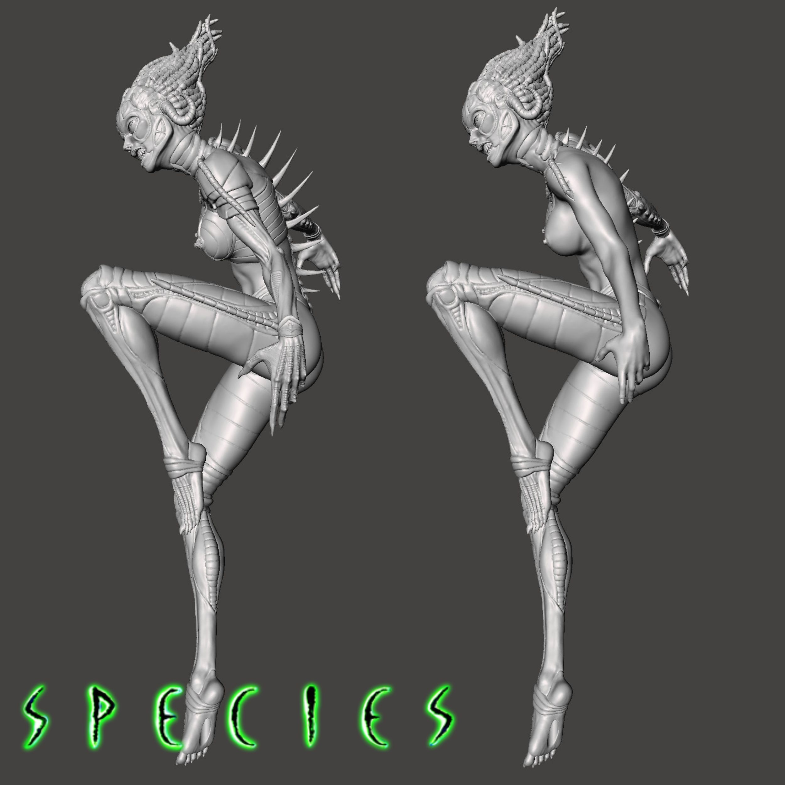 Image13.jpg Download STL file Alien Girl - SPECIES Part 1- by SPARX • 3D printable object, wikd2011