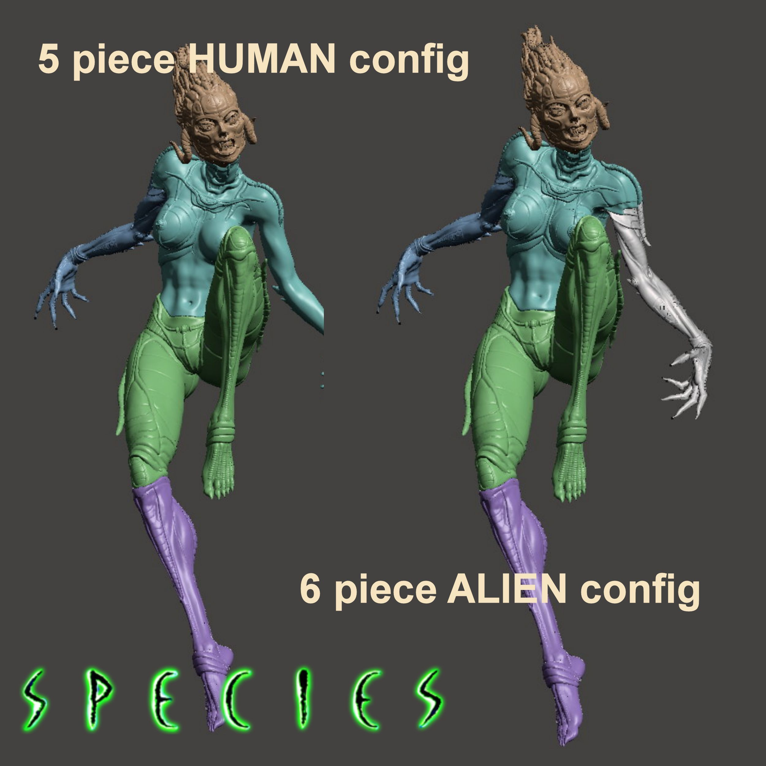 Image2.jpg Download STL file Alien Girl - SPECIES Part 1- by SPARX • 3D printable object, wikd2011