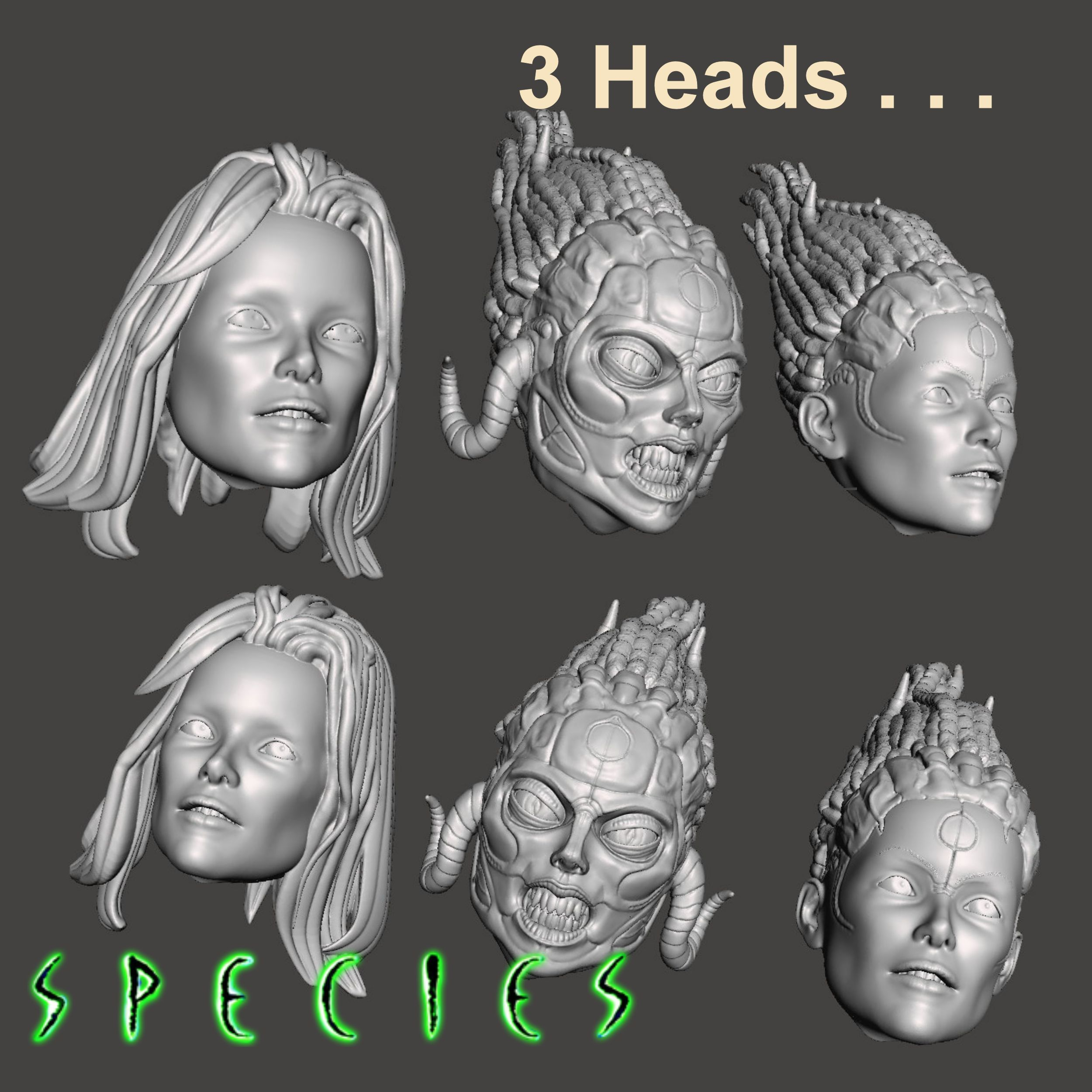 Image5.jpg Download STL file Alien Girl - SPECIES Part 1- by SPARX • 3D printable object, wikd2011