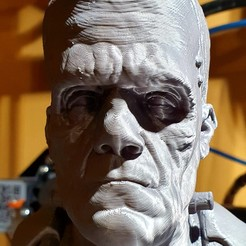 Download 3D printer templates The Frankenstein's monster bust , Birdyboyuk