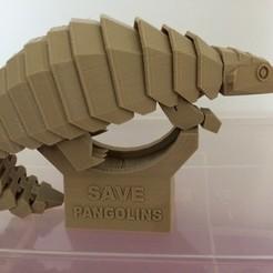 Download free 3D printer model Save pangolins, dforlithe