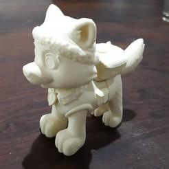 1.jpg Télécharger fichier STL Patrouille de la patte de l'Everest • Objet à imprimer en 3D, pablog673