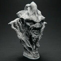 NiellgarothTheWise_Front_01.jpg Download free STL file Niellgaroth the Wise • 3D printable object, bendansie