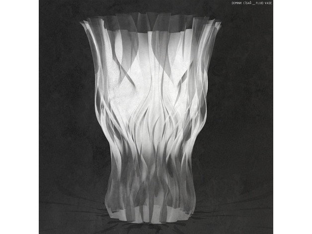 f7eb4146c175405dd1ad5b86c9bbddf4_preview_featured.jpg Download free STL file Fluid Vase for Josef Prusa • 3D print model, cisardom