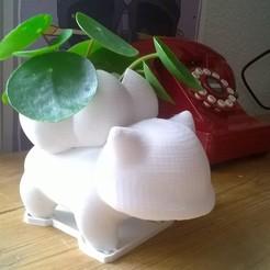 IMG_20180404_214614.jpg Download STL file bulbizarre flowerpot with saucer • 3D printer template, MR-Cozi