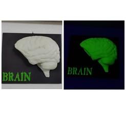 Download free 3D printing designs Glow brain, CircuitoMaker