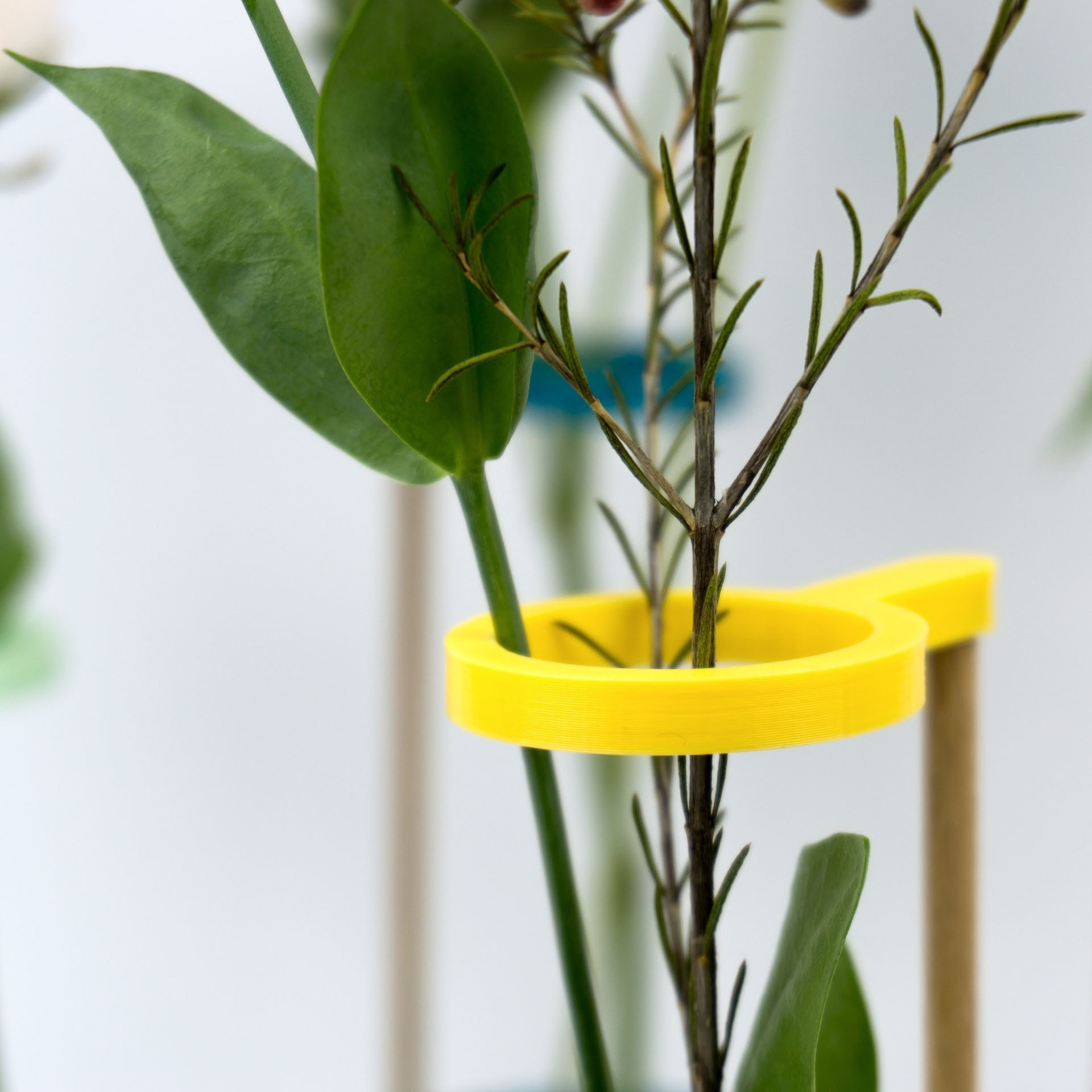 Shooting Pots et impression 3D - 2018 02 10 - 2.jpg Download STL file Stem vase / Vase to be fixed on a glass pot • 3D print object, Jonathan-AtelierVOUS