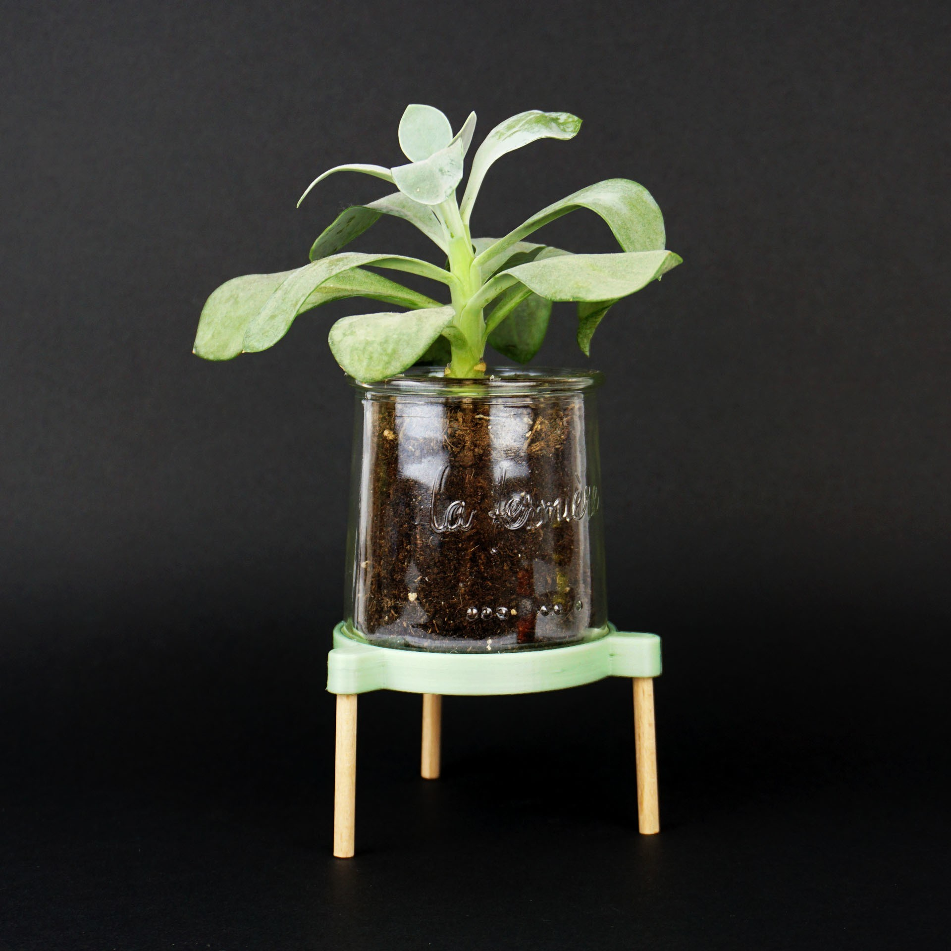 Shooting Pot coupelle - 2018 05 09 - 4.jpg Download STL file Tripod support for receiving a plant in a glass pot • 3D printable model, Jonathan-AtelierVOUS