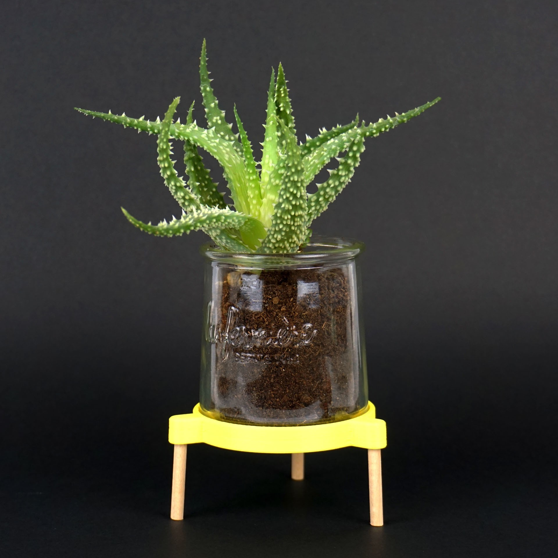 Shooting Pot coupelle - 2018 05 09 - 1.jpg Download STL file Tripod support for receiving a plant in a glass pot • 3D printable model, Jonathan-AtelierVOUS