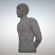 Archivos STL Star Trek Sr. Spock figurita y busto, sandpiper