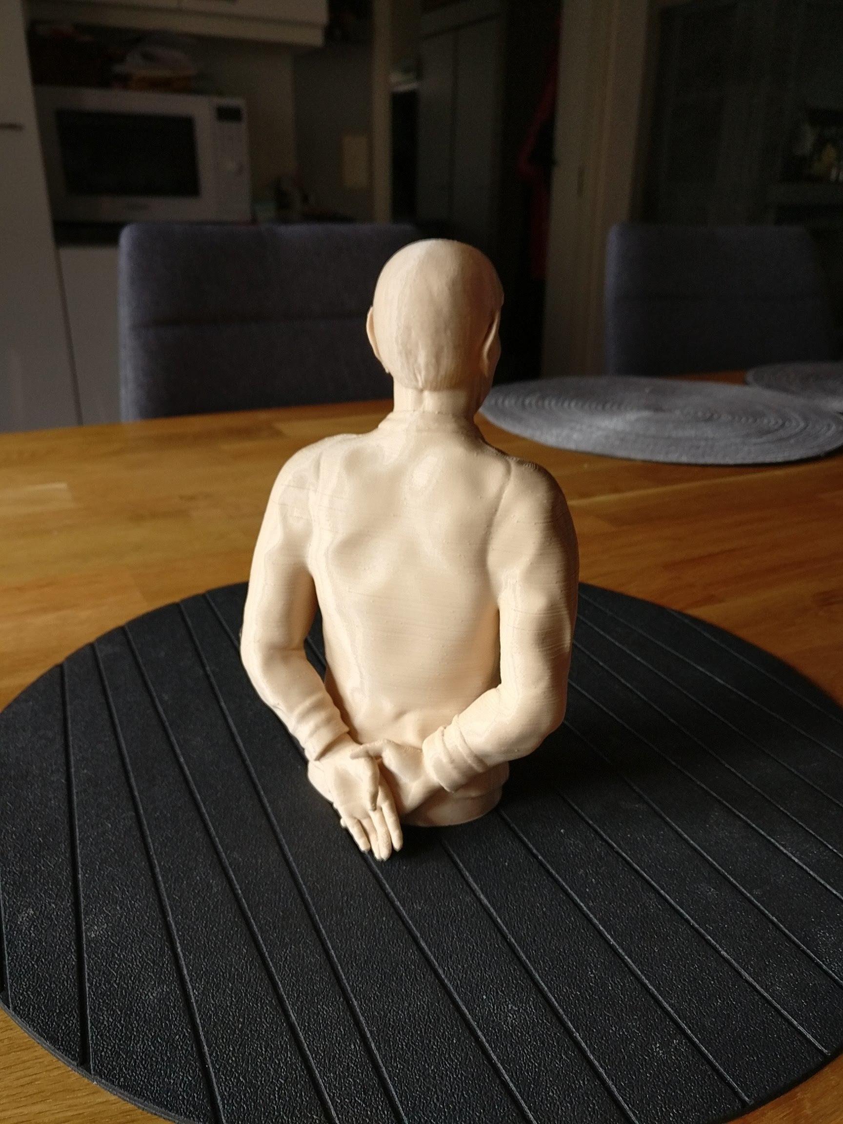 Sandpiper_Spock_print1.jpg Download STL file Star Trek Mr. Spock figurine and bust UPDATED • 3D printable object, sandpiper