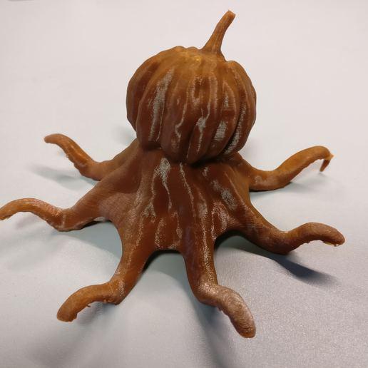IMG_20191019_170819.jpg Download free 3MF file Octosquash - Horrible Halloween Hybrid • Object to 3D print, sandpiper