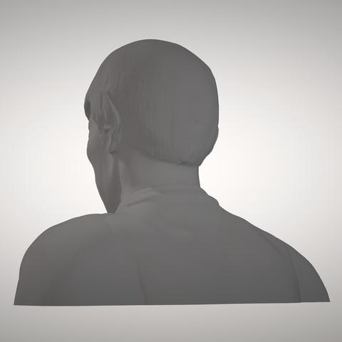 Sandpiper_Spock_Bust3.png Download STL file Star Trek Mr. Spock figurine and bust UPDATED • 3D printable object, sandpiper