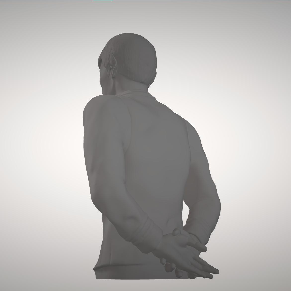 Sandpiper_Spock_Full3.png Download STL file Star Trek Mr. Spock figurine and bust UPDATED • 3D printable object, sandpiper