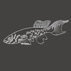 Download 3D printing files SILHOUETTE FISH, BertrandW