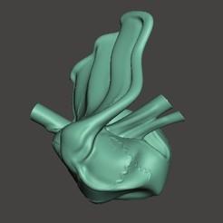 coeur2.jpg Télécharger fichier OBJ Coeur artistique • Plan pour imprimante 3D, BertrandW