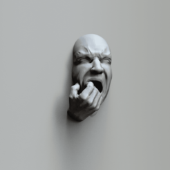 face expr27a.418.png Download STL file Fear - Art piece • 3D printer object, MarcArt