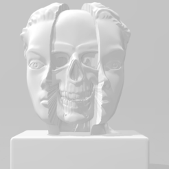 Download 3D printer files Splitted woman's head with skull, MarcArt