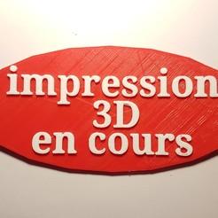Descargar archivo 3D gratis Impresión 3D en curso en 3D, f1l2o30