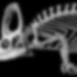Free 3d printer files Chamaeleo calyptratus, Veiled Chameleon , MadScientist3D