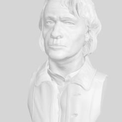 Download free STL file Joker Bust • 3D printable template, 3DArt