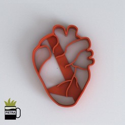 Download 3D printer templates FONDANT COOKIE CUTTER MOULD OF HUMAN HEART BODY ORGANS 3D PRINT MODEL, Gustavo015