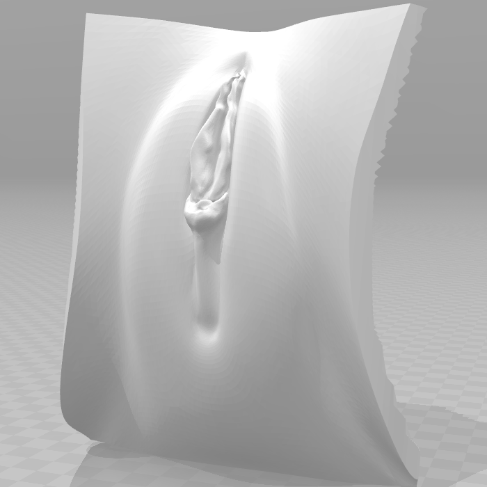 vag4.png Download OBJ file 3D Vagina • Design to 3D print, QwertyPlate