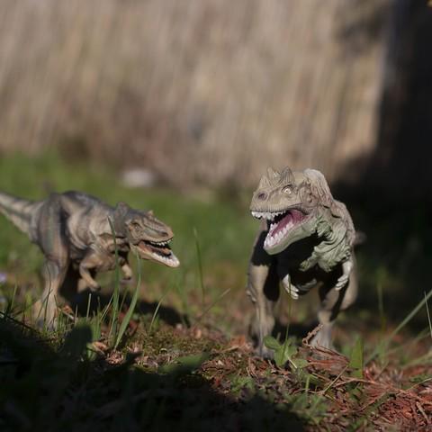 Descargar archivos STL gratis Alioramus dinosaurus, maca-artwork
