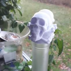 Modelos 3D gratis Veneno Skulls Bottle Stopper, 3rdesignworks