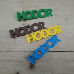 dsc_0429.jpg Download STL file Hodorstop • 3D printing model, hlias