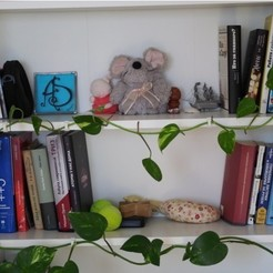 Download free 3D printing files Shelf brackets for ivy, kumekay