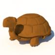 Download 3D model turtle for aquarium, 3Diego