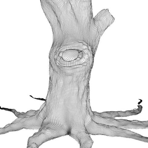 OLD-TREE-C.jpg Download STL file Old tree • 3D printer template, pumpkinhead3d