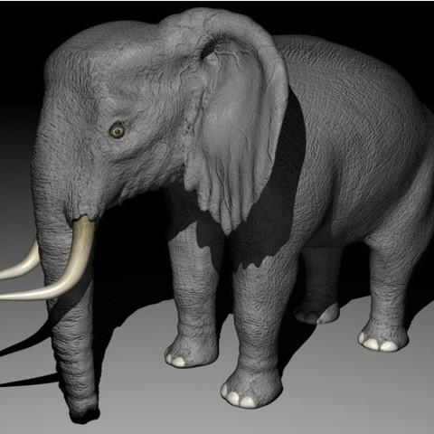 953ef6f8ff68a967fb534e061c83427f_preview_featured.jpg Download STL file Elephant • 3D printing object, pumpkinhead3d