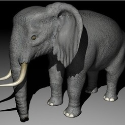Download STL file Elephant • 3D printing object, pumpkinhead3d