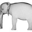 9051b9882537b8dfc532a18208341100_preview_featured.jpg Download STL file Elephant • 3D printing object, pumpkinhead3d