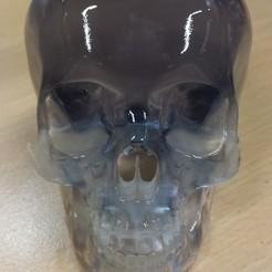 Modelos 3D para imprimir Cráneo de Cristal, Dekro