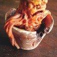 Télécharger fichier imprimante 3D Mandragore - Harry Potter, tolgaaxu