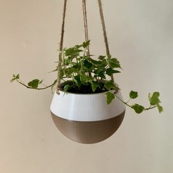 Download free 3D printer model Hanging Planter, the3dbunny