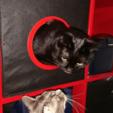 Modèle 3D gratuit IKEA Cat Box, DasMia