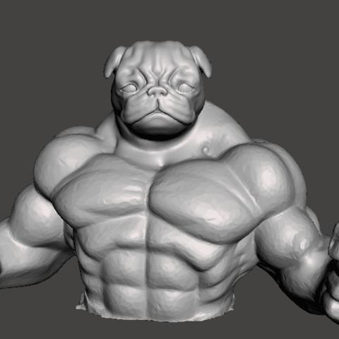 Download free STL Muscle pug, martinolguin740