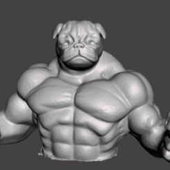 Sin título.png Download free STL file Muscle pug • 3D printer model, Marolce19