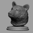3D print model Black Bear Bust, JGranite