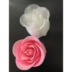 Download free 3D printer designs Closed Rose, johnnycope