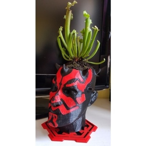 Free 3d print files Darth Maul Planter (remix), Lau85