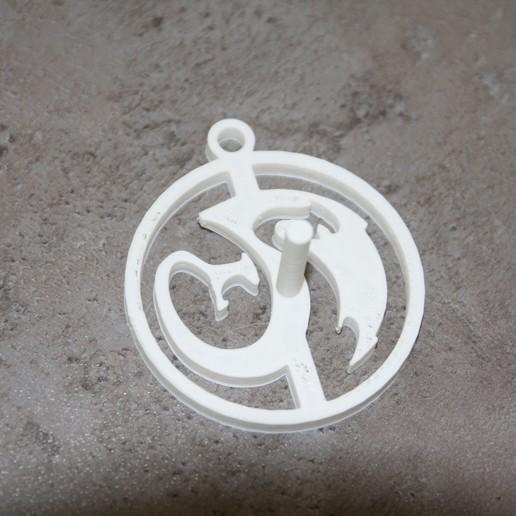 IMG_8730.JPG Télécharger fichier STL gratuit Modèle d'amulette de dragon / fabricant de moules • Modèle à imprimer en 3D, plokr