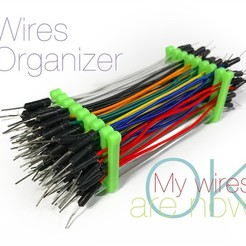 Download free STL file Wires Organizer • Object to 3D print, perinski